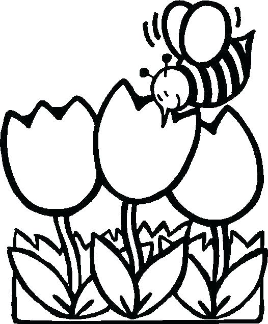 526x636 Flowers Coloring Flowers Coloring Cute Flower Coloring Pages Cute