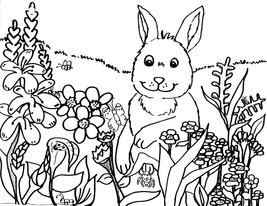 906x700 Free Spring Coloring Pages Cute Spring Coloring Pages Spring
