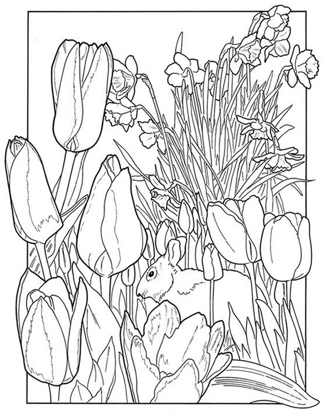 653x800 Adult Coloring Pages En Spring Cute Spring Coloring Pages