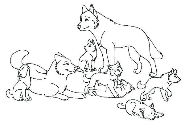 600x415 Coloring Pictures Of Wolves Cute Wolves Coloring Pages Printable