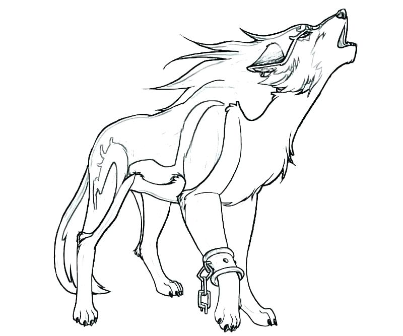800x667 Cute Wolf Coloring Pages Cute Wolf Coloring Pages Coloring