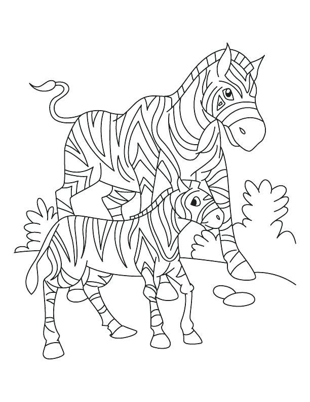 612x792 Zebra Color Sheet Free Coloring Page Zebra Zebra Color Sheet Zebra