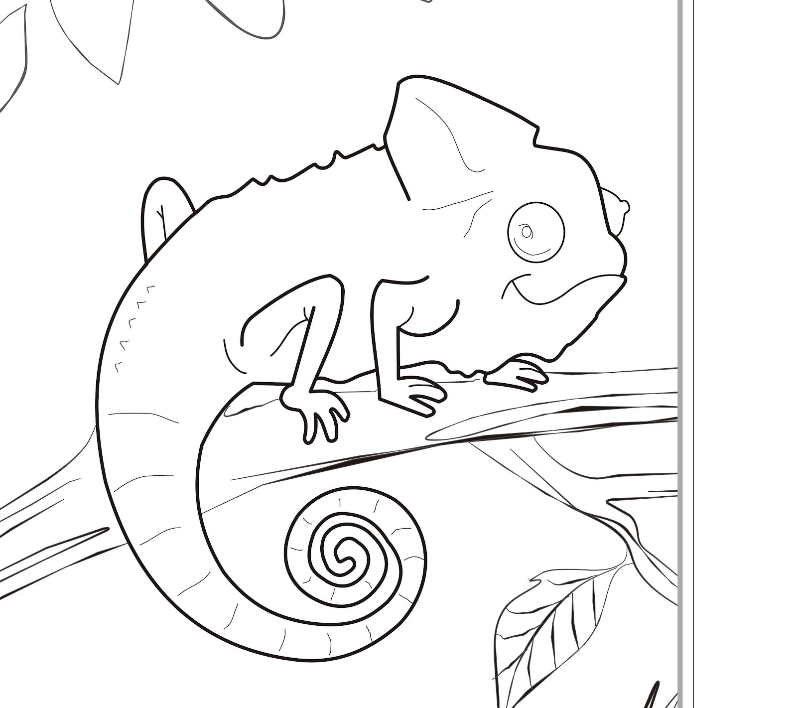 1600x1421 Fresh Cute Zoo Animals Coloring Pages Zoo Animal Coloring Pages