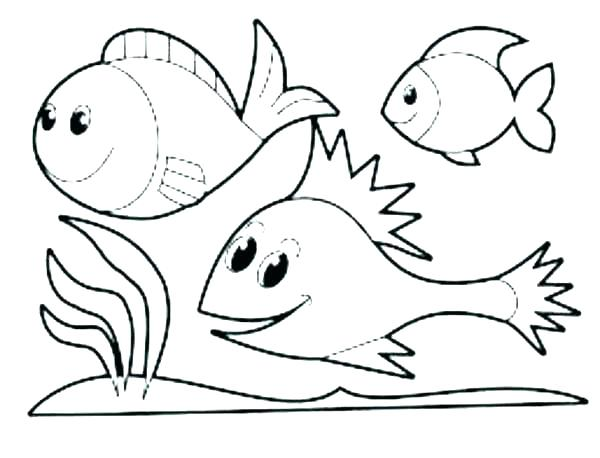 600x458 Zoo Animal Coloring Page Coloring Pages Zoo Zoo Animals Coloring