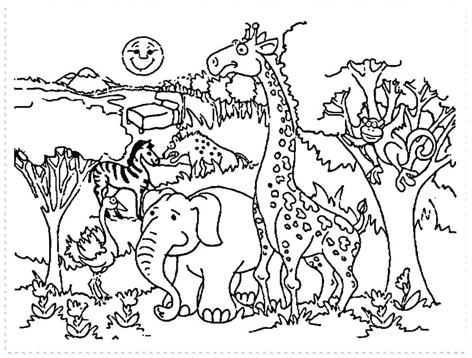 970x737 Zoo Animal Coloring Page Lofty Idea Zoo Animals Coloring Pages