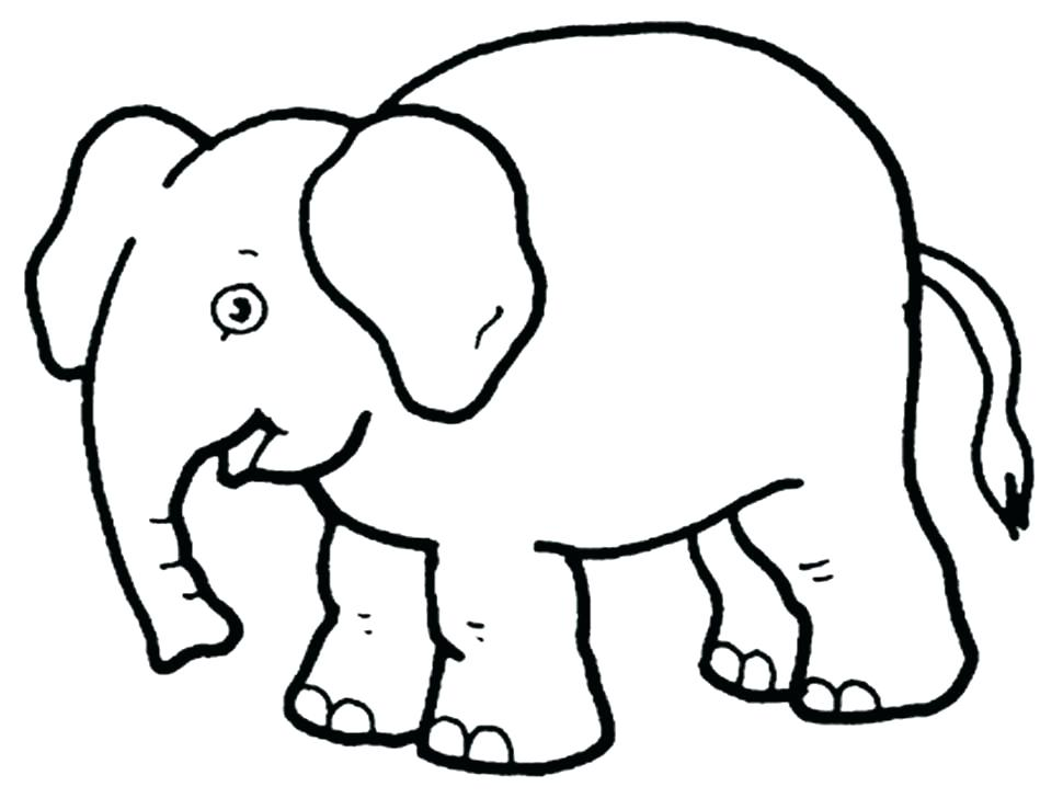 970x728 Baby Zoo Animals Coloring Pages Coloring Baby Animals Baby Animal