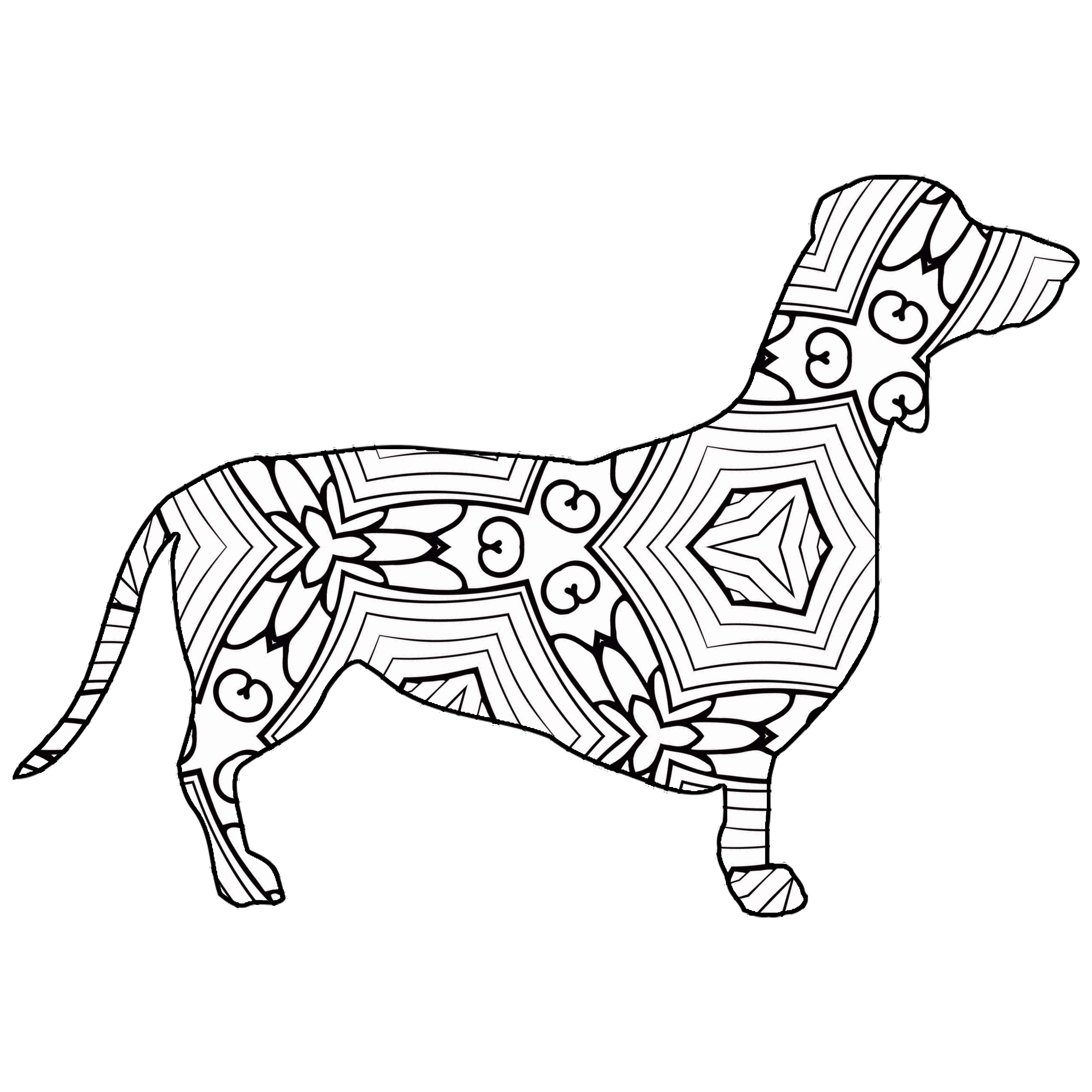 Dachshund Coloring Pages At Getdrawings Com Free For Personal Use