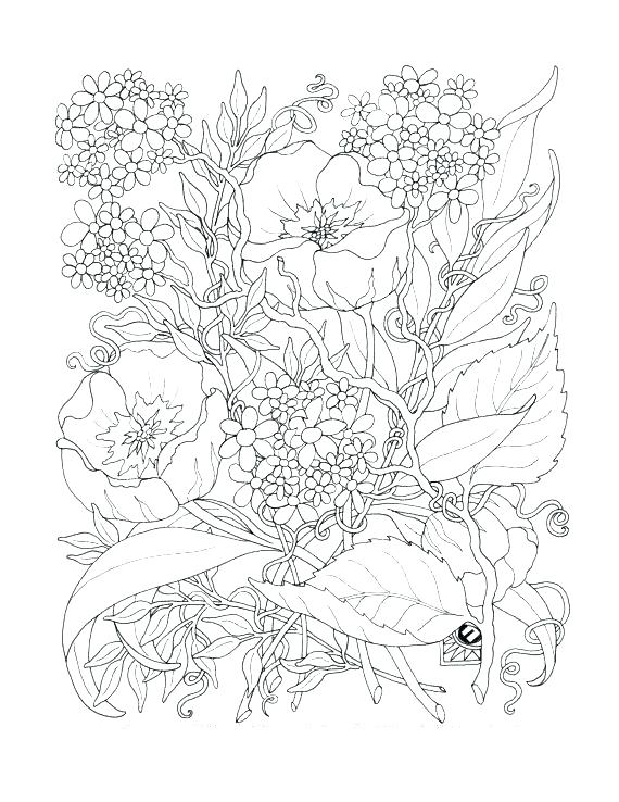 570x738 Coloring Pages For Adult Intricate Flower Coloring Pages Dahlia