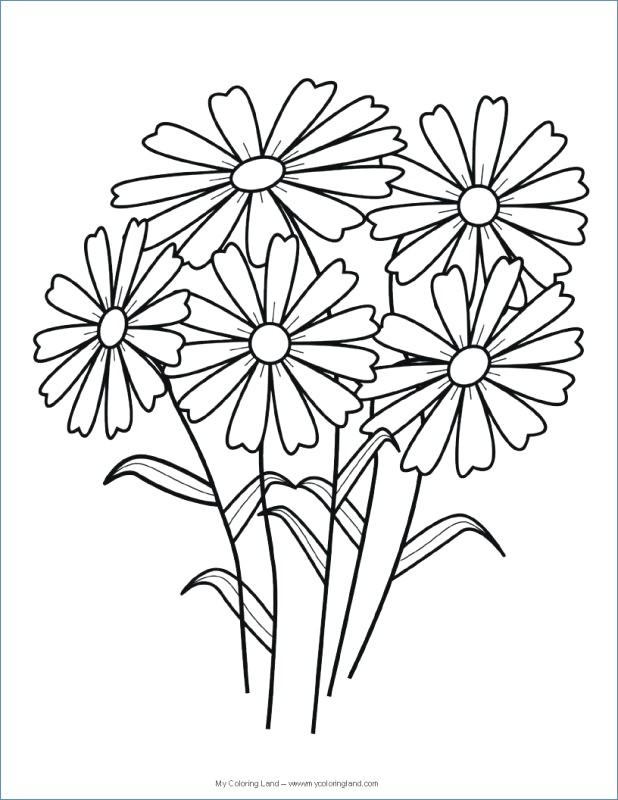618x800 Easy Printable Flower Coloring Pages