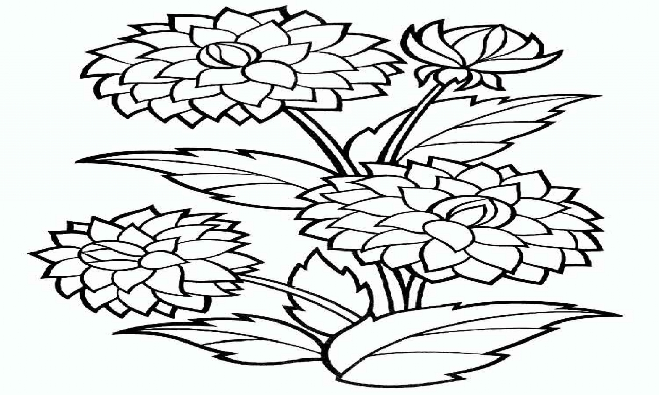 1280x768 Flower Coloring Pages Dahlia And Print