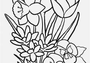 300x210 Flowers Coloring Pages Footage Dahlias To Print Color