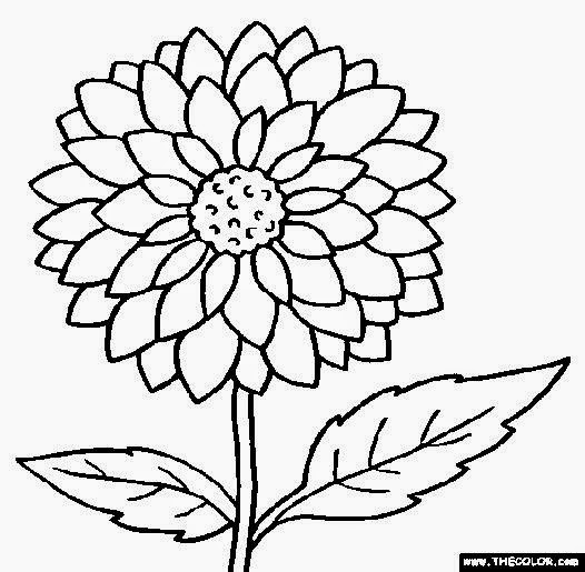 526x515 Pictures For Coloring Free Coloring Pictures