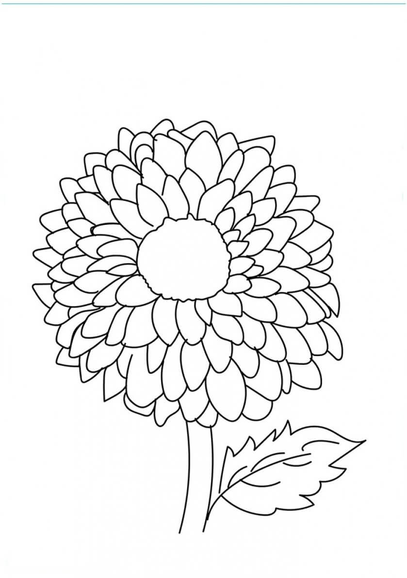 839x1193 Beautiful Printable Flowers Coloring Pages