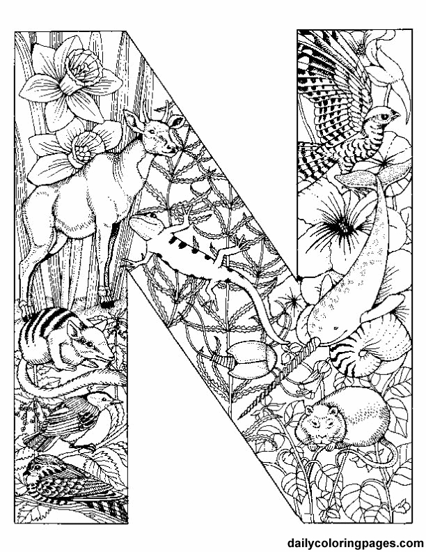612x792 Daily Coloring Pages N Animal Alphabet Letters To Print