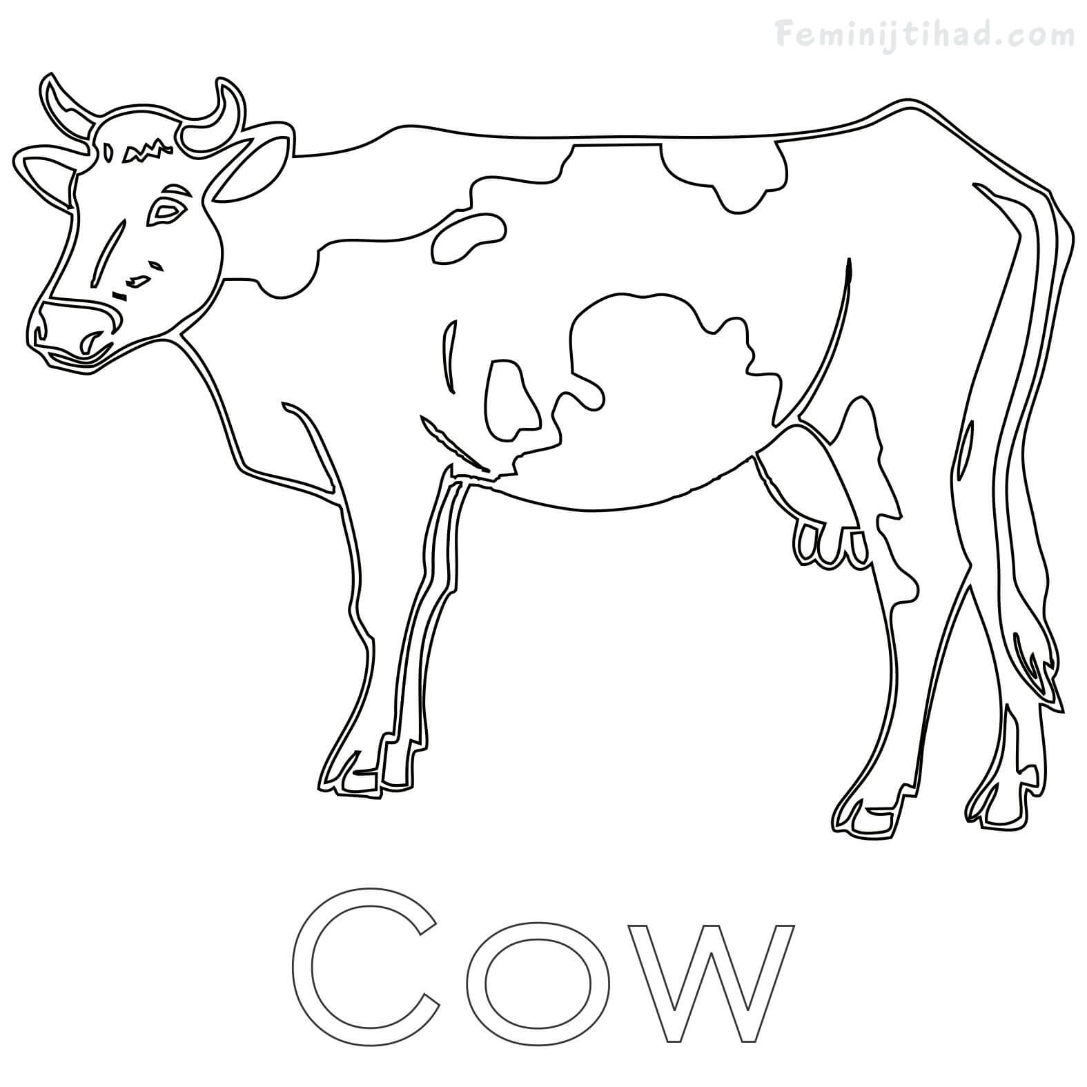 1575x1575 Cow Coloring Pages Free To Print Coloring Pages For Kids