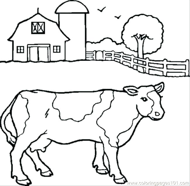 650x635 Cows Coloring Pages Cow Coloring Page Cow Coloring Pages Cows
