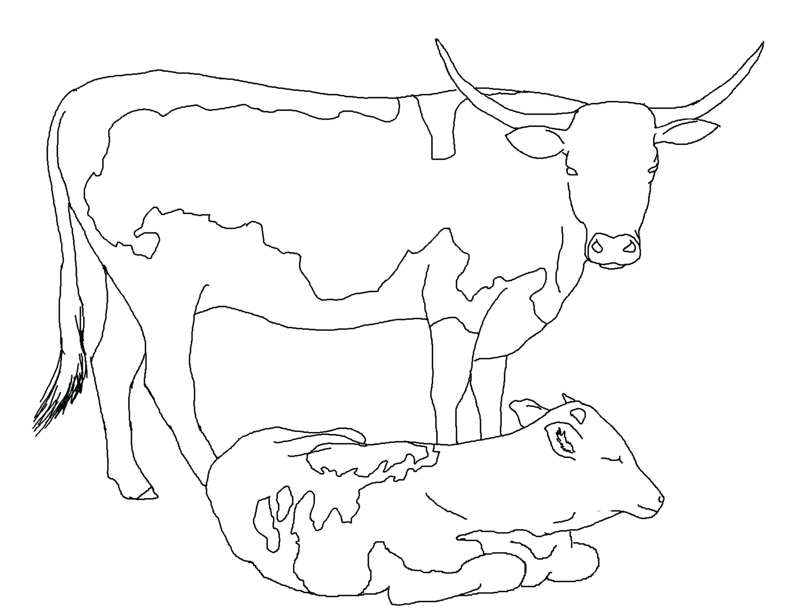 2508x1952 Dairy Cow Coloring Pages