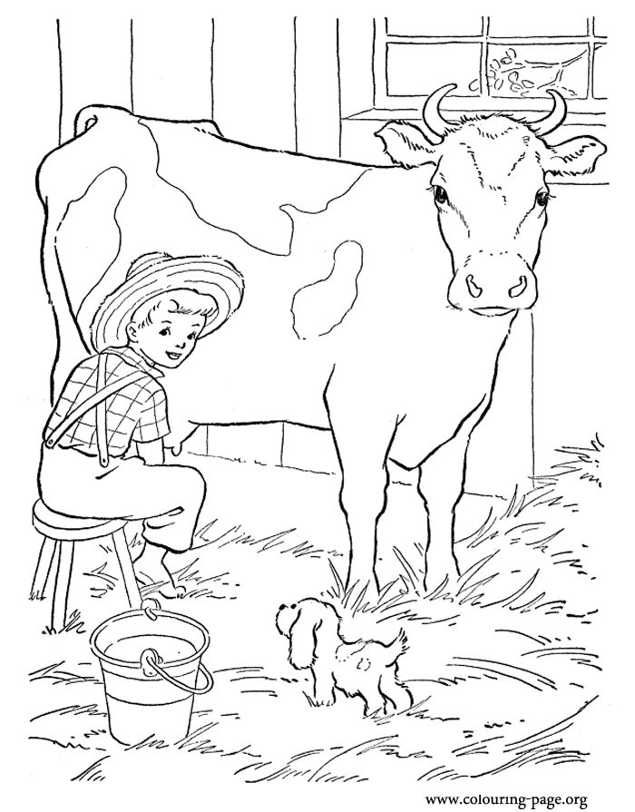 700x895 Dairy Cow Coloring Pages Fun Time