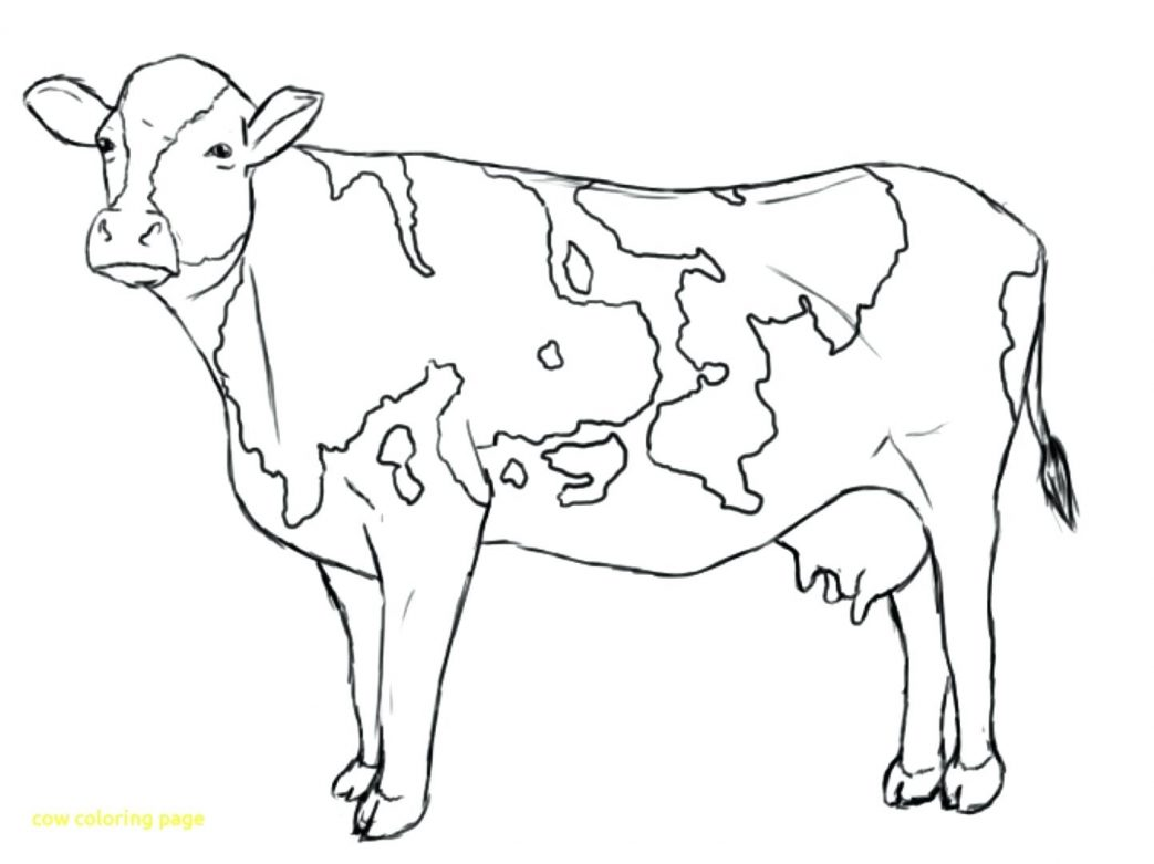 1043x781 Rare Coloring Pages Of Cows Free Printable Flowers In A Vase Cow