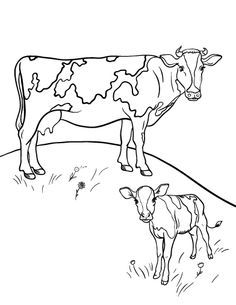 236x305 Texas Longhorn Cow Coloring Page Free Printable Coloring Pages