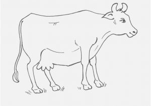 300x210 Cow Coloring Page Image Secrets Dairy Cow Coloring Pages Page