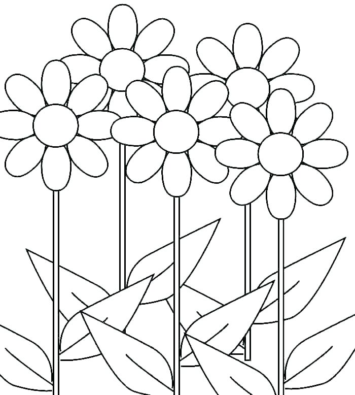 700x778 Girl Scout Daisy Coloring Pages Daisy Girl Scout Coloring Page