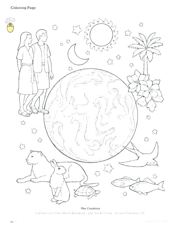 590x767 Creation Story Coloring Pages Coloring Pages Of The Bible Coloring