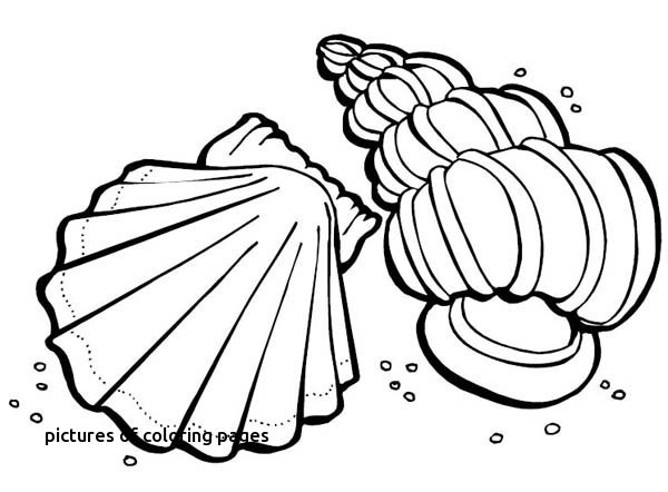 600x442 Creation Coloring Pages Fun Time