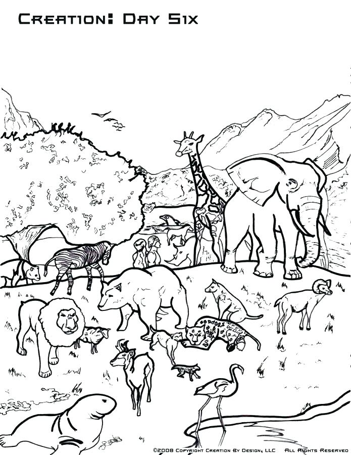 695x900 Coloring Pages Of Gods Creation