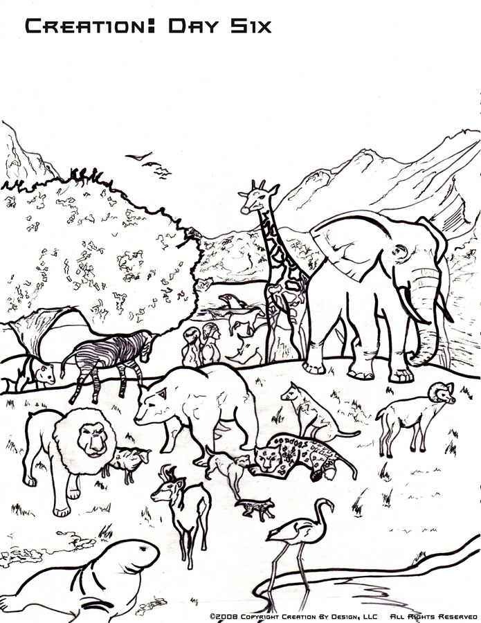 695x900 Modest Ideas Creation Day Coloring Page Days Colori On Days