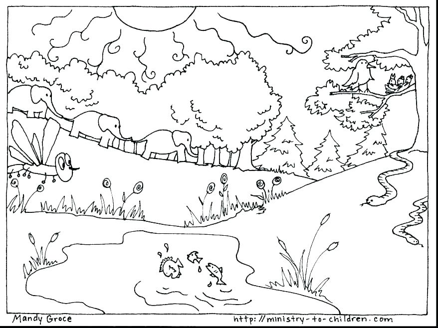 878x658 The Creation Coloring Pages For Children Creation Coloring Pages