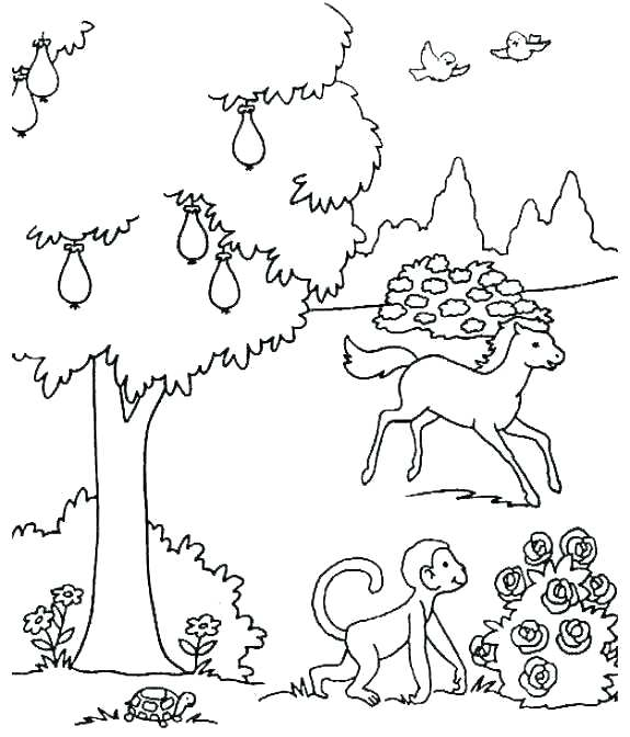 575x672 Ideas About Creation Coloring Pages On Days Of Ideas
