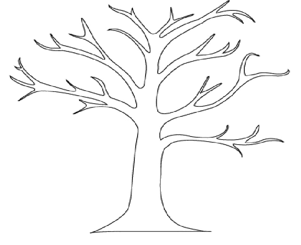 1013x825 Dead Tree Outline Coloring Page Printable Pages Bare Of A Plants