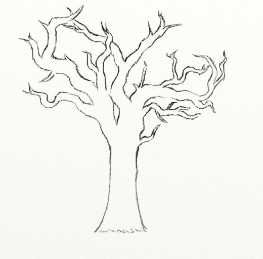 520x512 How To Draw A Dead Tree Coloring In Funny Page