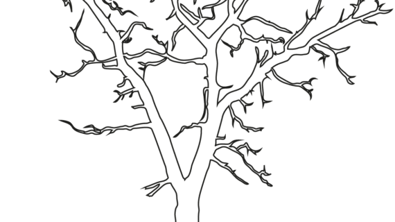 570x320 Outline Drawing Of A Tree Dead Tree Outline Coloring Page Free