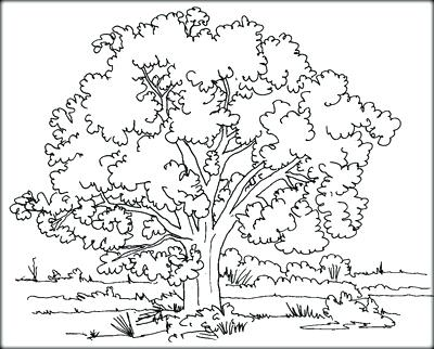 400x322 Printable Leaves Coloring Pages Of To Color We Are Fall Coloring