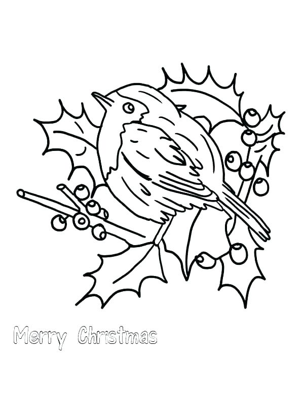 600x776 Robin Bird On Dead Tree Branch Coloring Page Download Print Robin