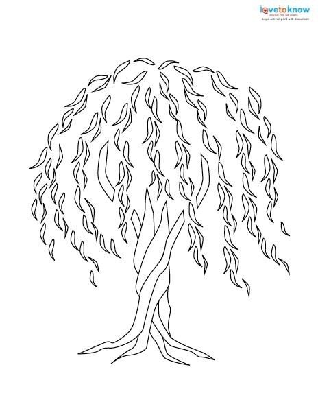 464x602 Willow Tree Coloring Page Simple Living Tree In The World Places