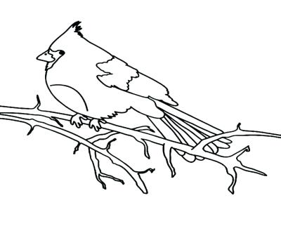 400x322 Cardinal Bird Coloring Page Bird Coloring Pages Printable Coloring