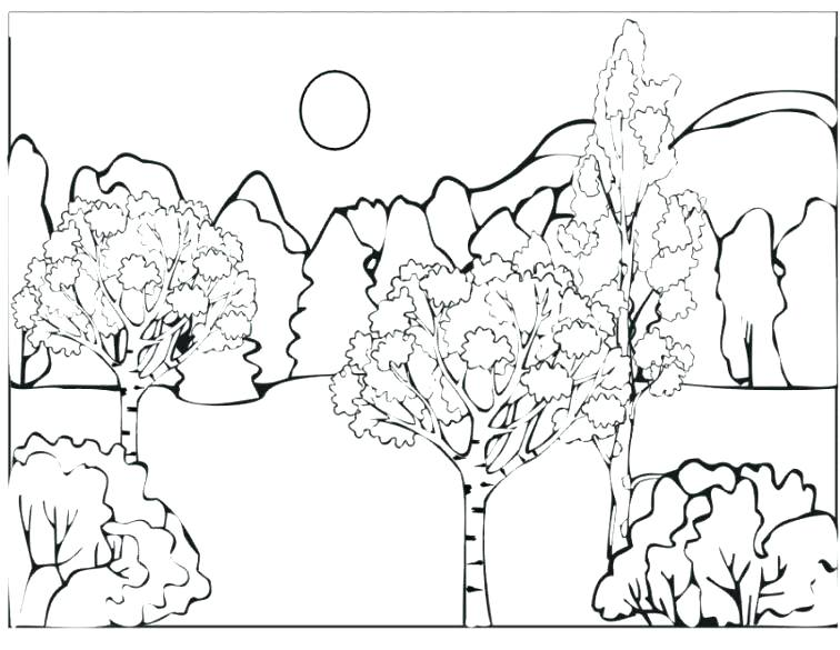 756x585 Coloring Pages Forest Forest Animals Coloring Pages Forest Animals