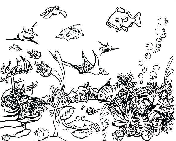 Deep Sea Coloring Pages At GetDrawings Free Download