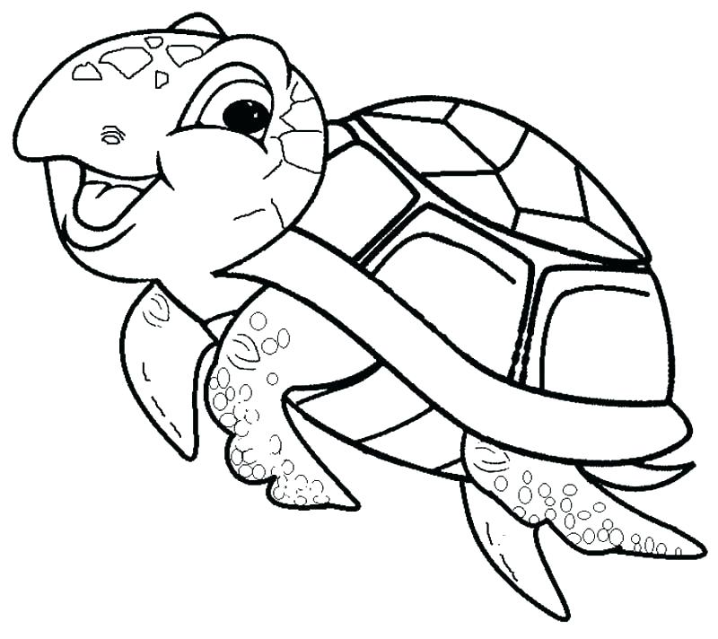 800x712 Coloring Book Turtle As Well As Coloring Pages Of A Turtle Sea