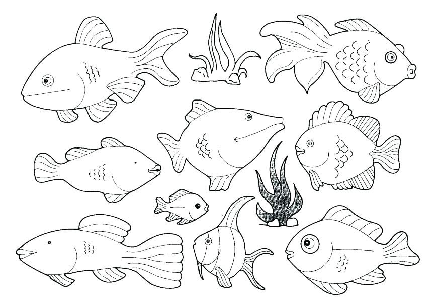 875x595 Sea Creature Coloring Pages Deep Sea Creatures Coloring Pages Deep