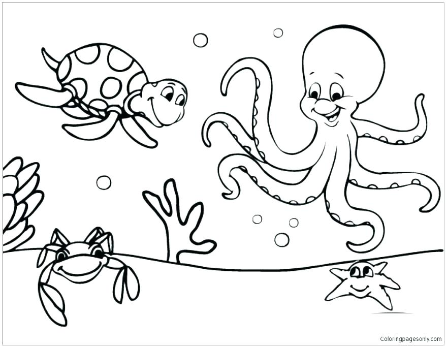 878x683 Sea Creature Coloring Pages Sea Animals Coloring Pages Trendy