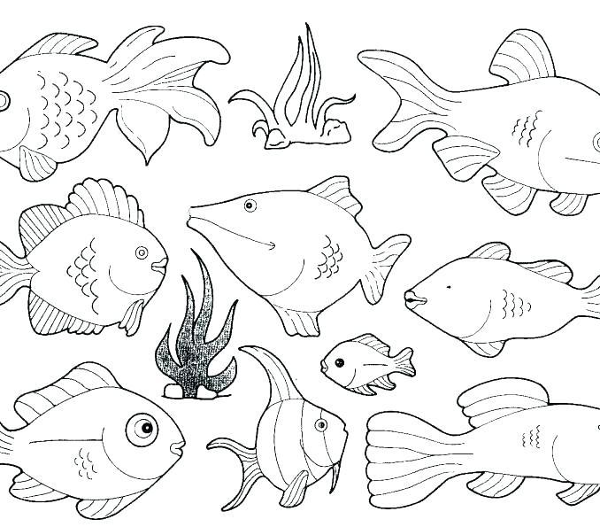 678x595 Sea Creatures Coloring Sea Animals For Coloring Deep Sea Creatures
