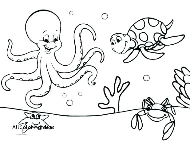 618x464 Coloring Pages Under The Sea Vanda