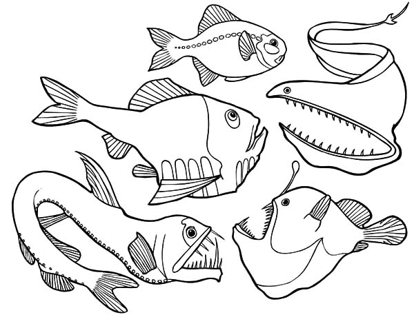 600x460 Deep Sea Coloring Pages