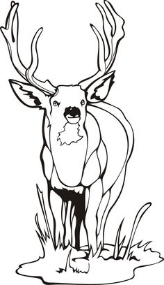 236x408 Deer Coloring Page, Add Pipe Cleaner Antlers! Recipes Party