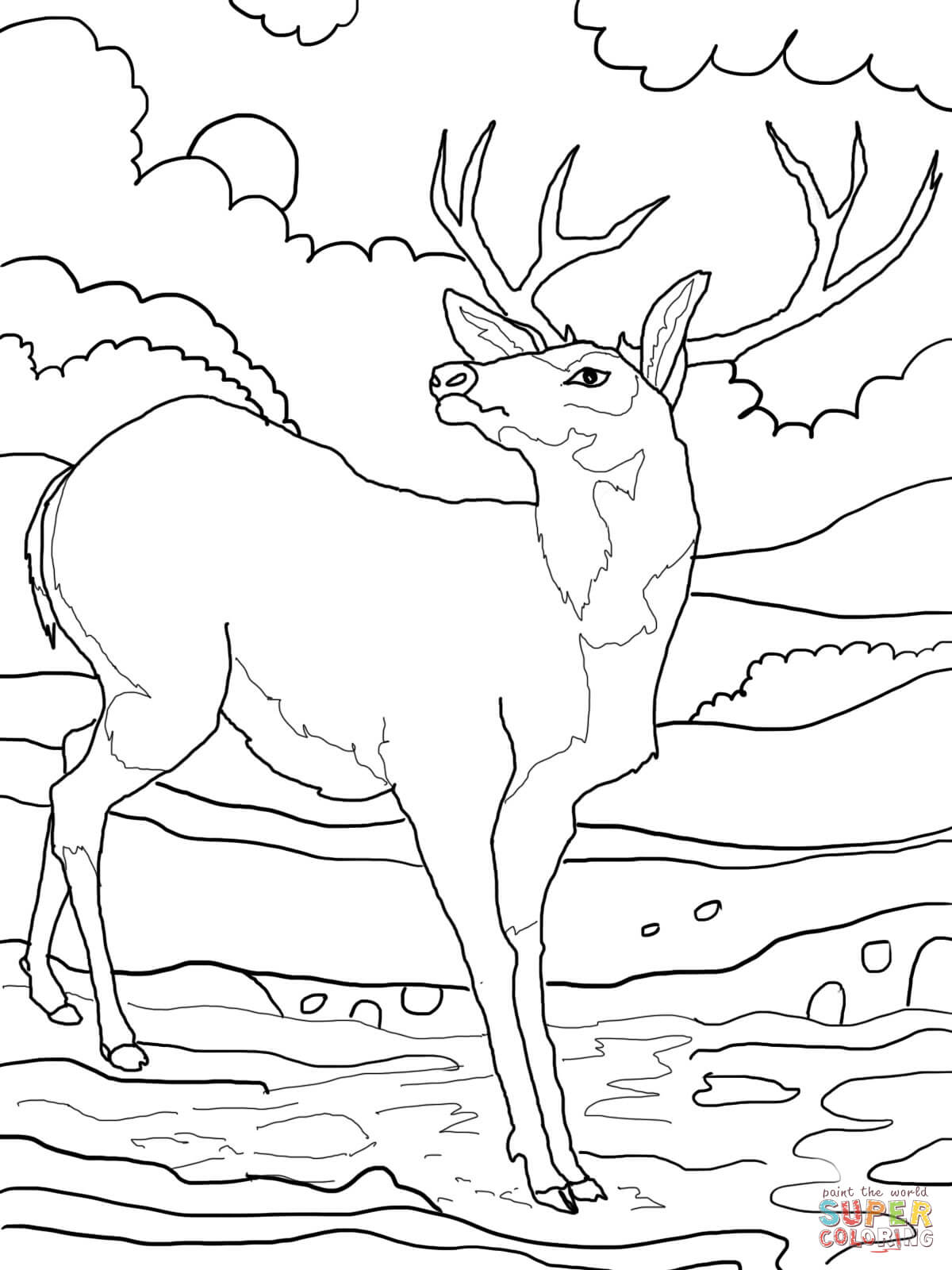1200x1600 Printable Deer Coloring Pages For Kids Of Christmas Page Animal