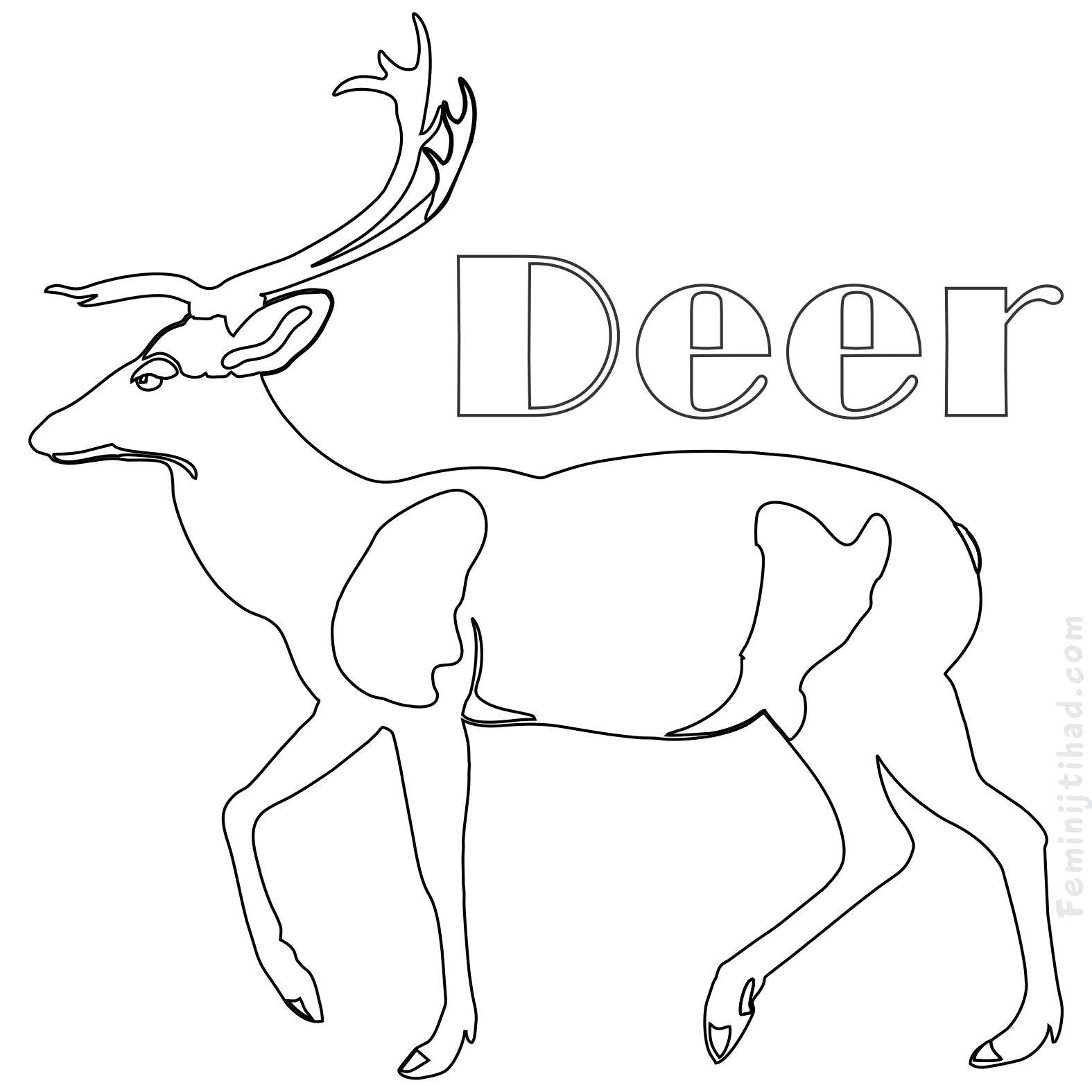 1575x1575 Printable Deer Coloring Pages Free Download Coloring Pages For Kids
